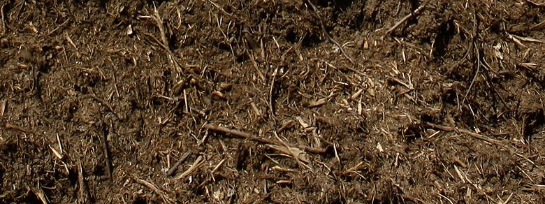 Kompost Erden Nord – Verkauf Kompost