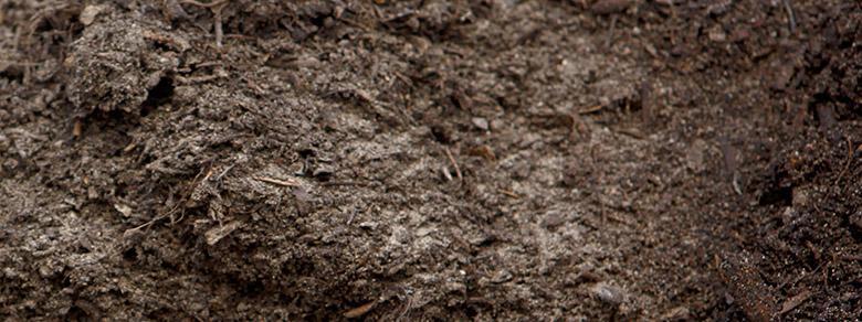 Kompost Und Erden : erde und boden kaufen kompost erden nord gmbh ~ A.2002-acura-tl-radio.info Haus und Dekorationen